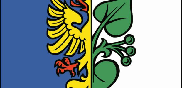 Karviná – Černý les v Karviné Ráji se rozprostírá na severozápadním svahu Rájského kopce, lesem protéká Rájský potok a středem lesa vede česko-polská hranice.