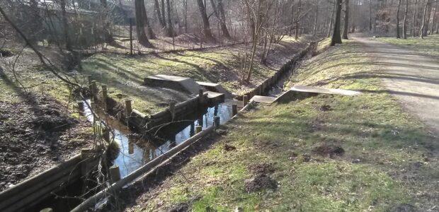 Karviná – Rájecký potok protéká lesoparkem Bažantnice, podtéká fotbalový stadion a vtéká do Mlýnky.