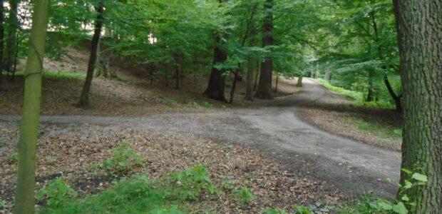 Karviná – Lesopark Bažantnice v Karviné Ráji. Lesoparkem Bažantnice, který sousedí s Černým lesem protéká Rájecký potok a nachází se v něm Městský stadion.